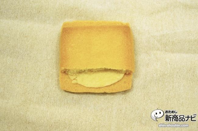 sandcookie_13050703