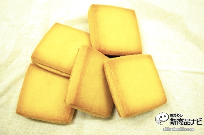 sandcookie_13050704
