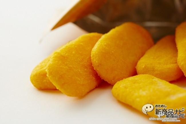 Vegeハッピー かぼちゃ味005