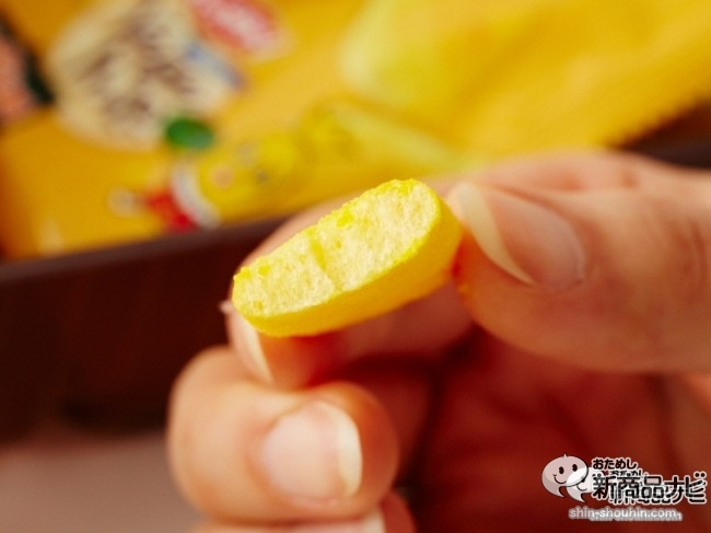 Vegeハッピー かぼちゃ味006