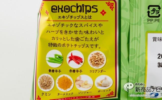 エキゾチップスグリーンカレー005