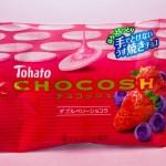 チョコッシュダブルベリーショコラIMG_7523