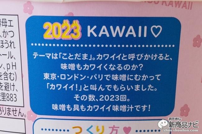 カワイイ味噌汁原宿味IMG_7775