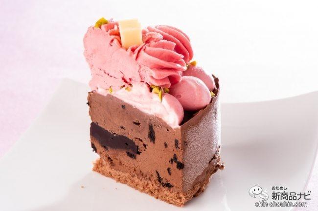 1人分に切り分けられた、ラズベリージェラートとビターチョコレートのアイスケーキ